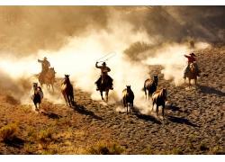 草原上套马的西部牛仔