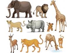 插画动物合辑图片