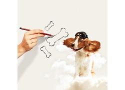 铅笔画骨头与小狗