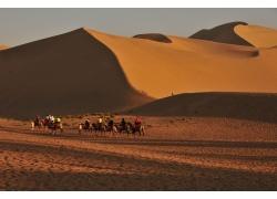 沙漠旅游队伍