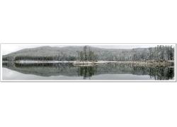 美丽冬天树林湖泊风景