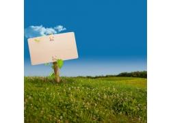 鲜花丛中的指示牌