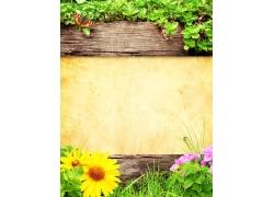 木板鲜花背景边框