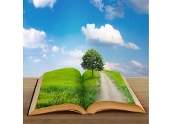 书本与草地蓝天白云