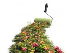 油漆滚筒刷与鲜花草地
