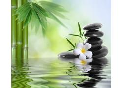 竹子与石头鲜花