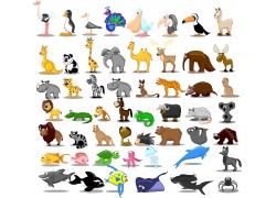 矢量动物插画图片