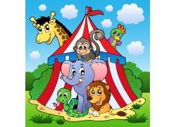 卡通马戏团动物图片