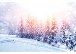 美丽冬天雪景背景