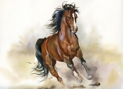 奔跑的马水彩画
