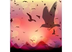 飞翔的小鸟剪影