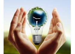 手中的环保灯泡