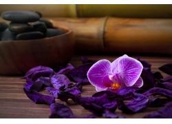 木板上的花朵与美体石桌子
