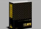 中国房地产广告年鉴-世纪珍藏版