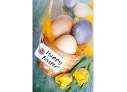 篮子里的彩蛋和郁金香