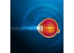 眼球和蓝色圆环科技背景图片