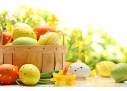 彩蛋和黄色的鲜花
