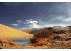 沙漠中的池塘和树木建筑