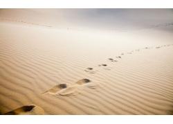 美丽沙漠上的脚印