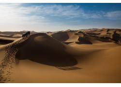 天空沙漠背景