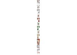 时尚女装产品细节描述