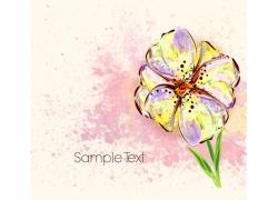 手绘花朵和墨迹背景