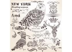 驯鹿与鸟类插画图片