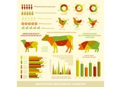 彩色动物分析图