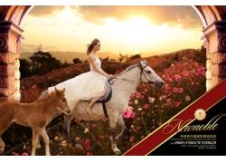 骑马的美女地产背景设计