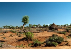 非洲沙漠风景