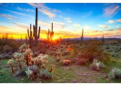 天空下的沙漠摄影