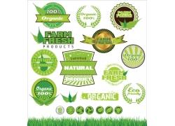 绿色环保徽章标贴