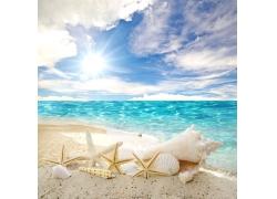 美丽海滩风景