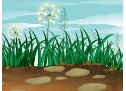 草地上的蒲公英图片