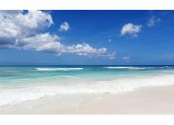 大海与沙滩图片