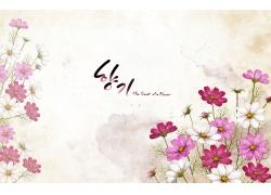 韩国插画花朵背景图片