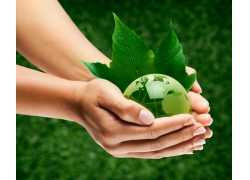 双手捧着的绿色地球树叶