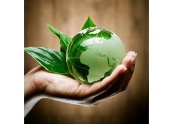 手捧着的地球绿叶