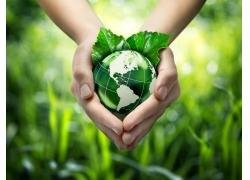 双手捧着绿色地球