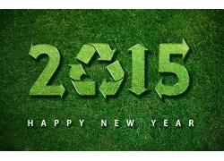 环保草地2015