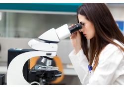 看显微镜的美女科学家
