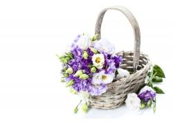 篮子里的花朵
