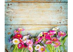 木板上的彩色花朵