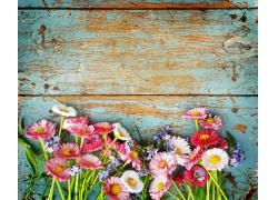 木板上的花朵
