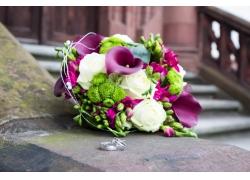 地面上的花朵