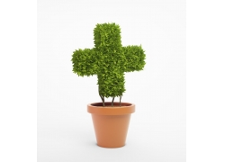 创意十字架园艺